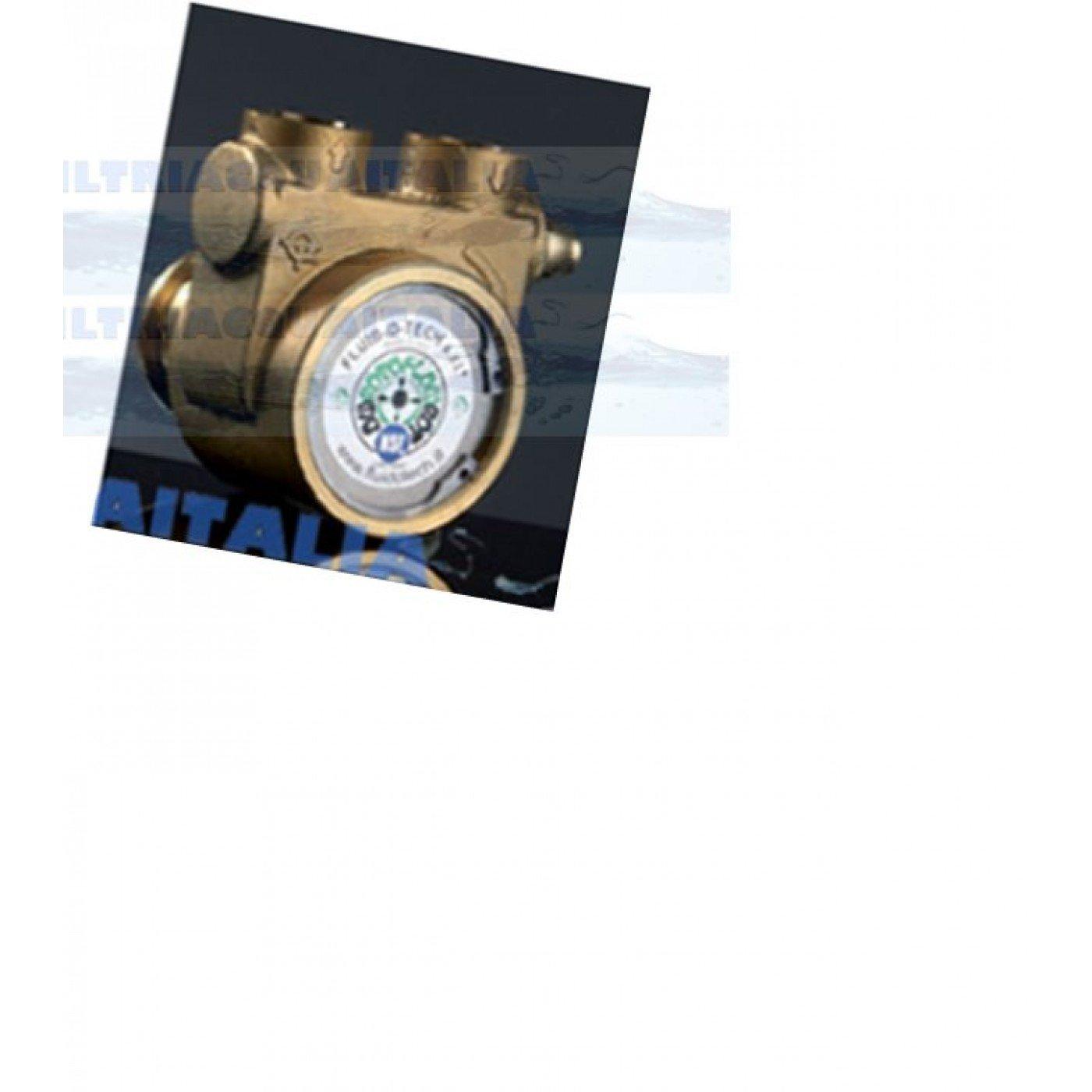 Pompa Rotativa a  Palette 300 LT/H